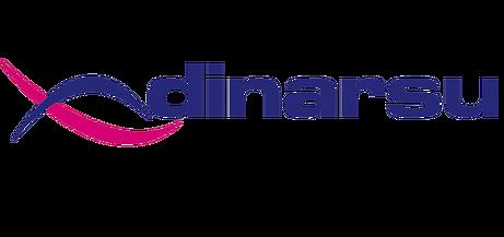 Dinarsu-Logo