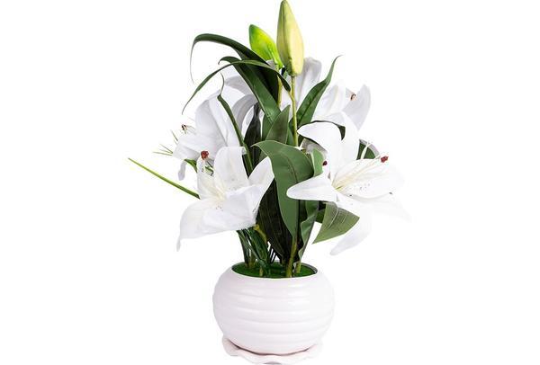 Dekonaz Dekoratif Çiçek Seramik Saksılı   Beyaz   Sas-0003